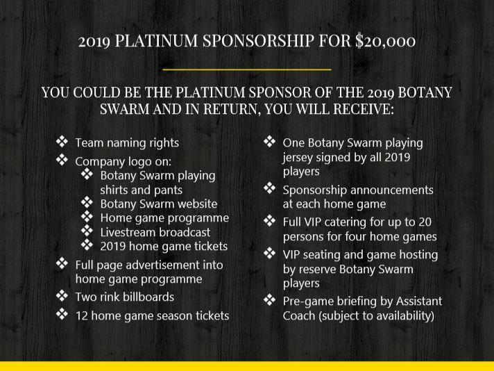 Platinum Sponsorship Image